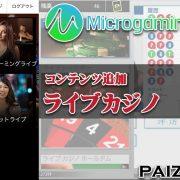 パイザカジノ マイクロゲーミング 操作方法