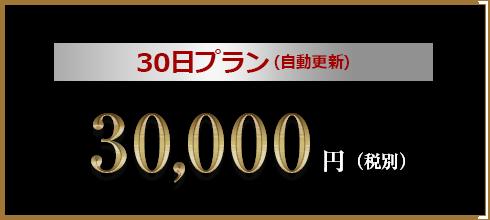 30日プラン30,000-